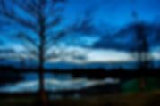 Picture of a sky colored with pre-dawn light over a lake in Valhalla, Florida as a fine art nature print for the wall of your home or office.