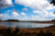 Picture of a Florida prairie lake as a fine art print for the wall of your home or office.