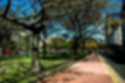 Picture of a walkway/park in the median of Aveneda Nueve de Julio in Buenos Aires, Argentina as a fine art print for the wall of your home or office.