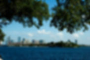 Picture of the Tampa, Florida skyline taken from Davis Islands as a fine art print for the wall of your home or office.