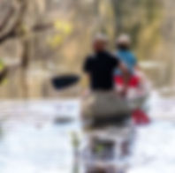 Picture of a couple canoeing on the Hillsborough River in Tampa, Florida's Lettuce Lake Park as a fine art print for the walls of your home or office.