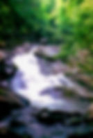 Picture of Picture of one of the streams in the Great Smoky Mountains as a fine art nature print for the wall of your home or office.