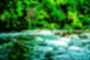 Digital picture of the rapids in Florida's Hillsborough River State Park as a fine art nature print for the wall of your home or office.