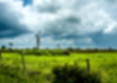 Picture of a pasture land in Osceola County, Florida as a fine art print for the wall of your home or office.