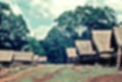 Picture of a Montagnard or Degar village in the central highlands of Vietnam 1967 as a fine art print for the wall of your home or office.