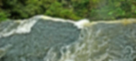 Picture from the top of one of the many falls that make up Iguazu in Argentina  for the wall of your home or office, as a fine art print.