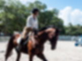 Picture of a rider practicing dressage skills in Ballast Point, Florida as a fine art print for the wall of your home or office.