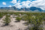 A pictue o the Chisos Mountains as a fine art print for the walls of your home or office.