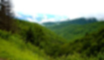Picture of a part of the Blue Ridge Parkway in North Carolina as a fine art nature print for the wall of your home or office.
