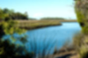 Picture of Jenkins Creek and the salt marsh off Hernando County Road 597 as a fine art print for the wall of your home or office.