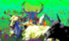 Picture of cattle might look like after eating a psychedelic cow pasture mushroom as a fine art nature print for the wall of your home or office.