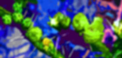 Picture of a abstract of prickly pear blossoms as a fine art nature print for the wall of your home or office.
