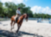 Picture of a rider practicing dressage in Ballast Point, Florida as a fine art print for the wall of your home or office.