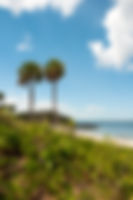Picture of south end of the swimming beach at Picnic Island Park in Port Tampa, Florida as a fine art nature print for the wall of your home or office.