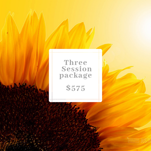 Pack of 3 | One on One sessions
