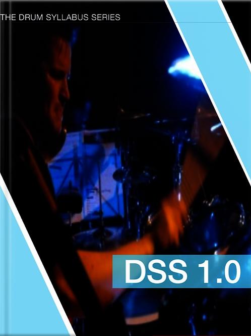 DSS 1.0