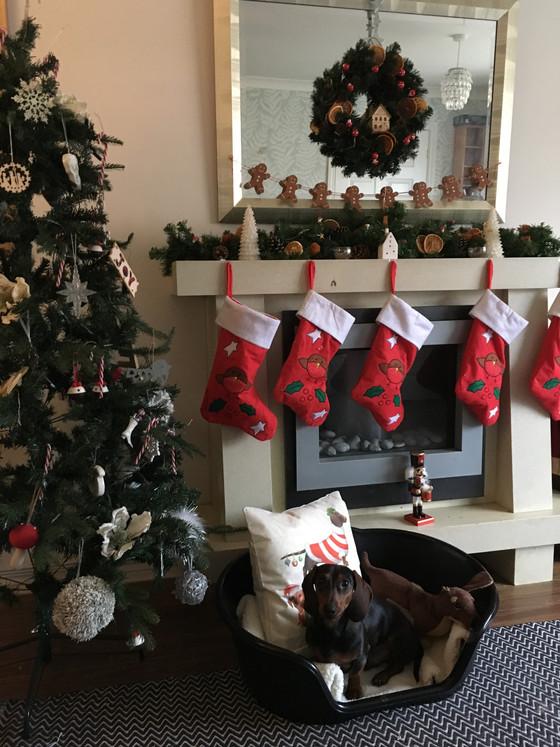 Blogmas Day - 9Christmas Wreaths