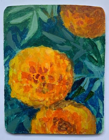 Marigold - Plein Air