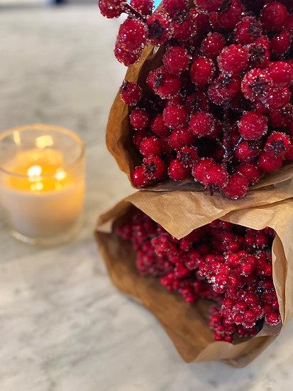 Cranberry Stems