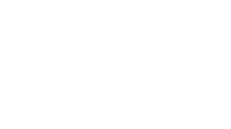 new logo NGS words WHITE.png