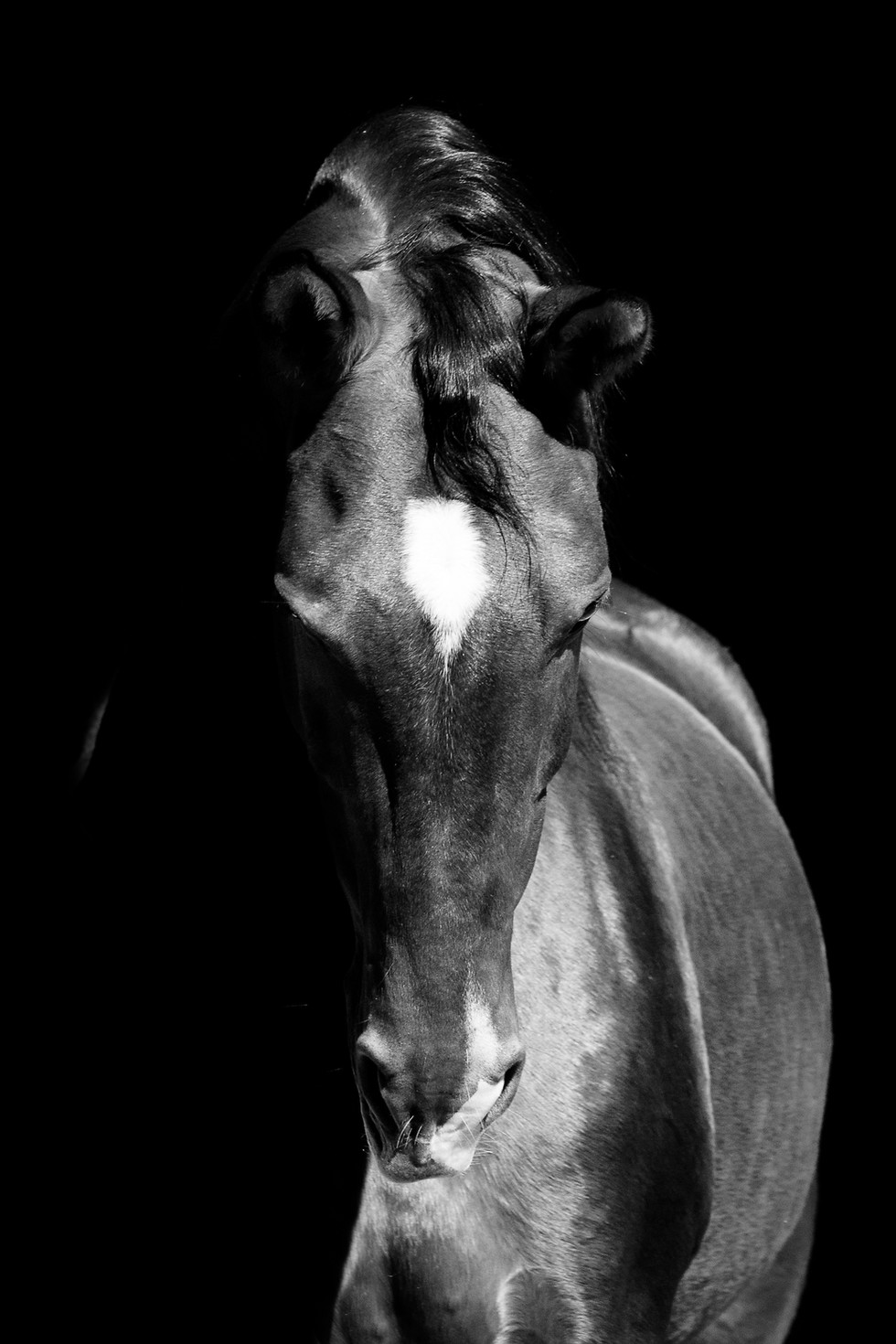 Katja Mayer Photography-205-40.jpg