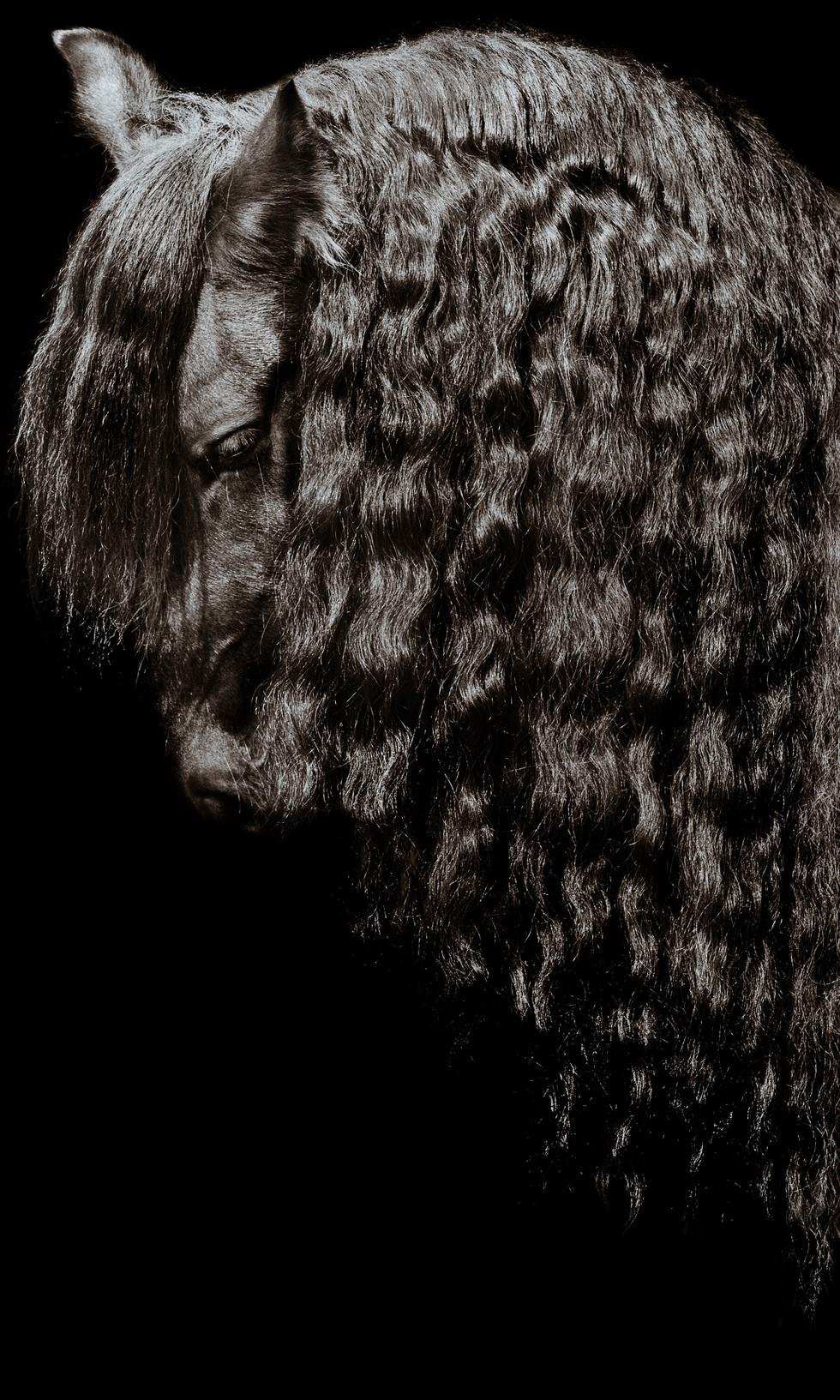 Katja Mayer Photography-205-14.jpg