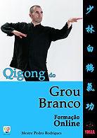 Curso de Qigong - Capa 3ª edição.jpg