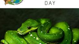 Reptile Awareness Day!