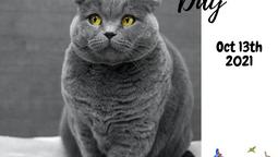 Pet Obesity Awareness Day!
