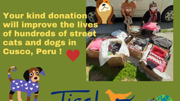 Tisol donates dozens of new dog jackets, sweaters and more for the street cats and dogs of Cusco!