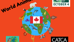 World Animal Day Canada Events