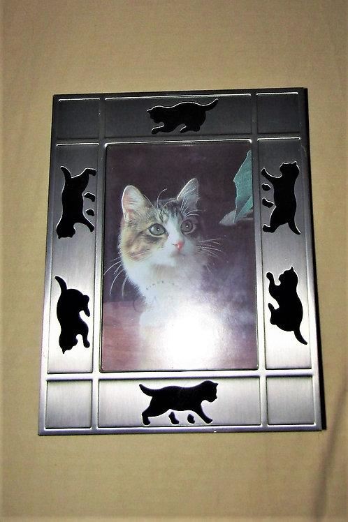 Metallic cat frame