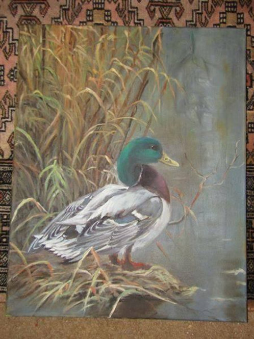 Duck oil painting