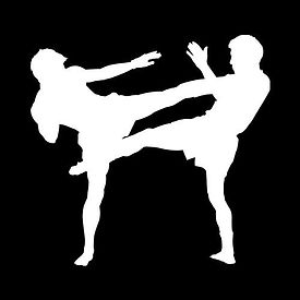 2 guys fighting silhuette (inverted).jpg