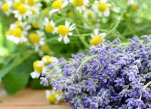 Large Lavender Chamomile Candle