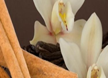 Medium Cinnamon Vanilla Candle