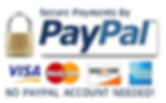 paypal_secure_payments copy.jpg