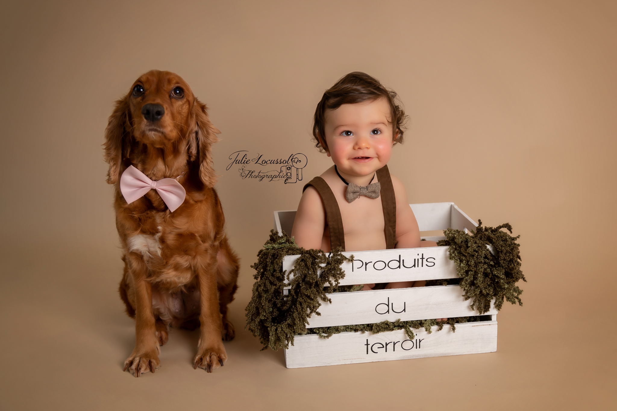 Photo bébé et chien Charente