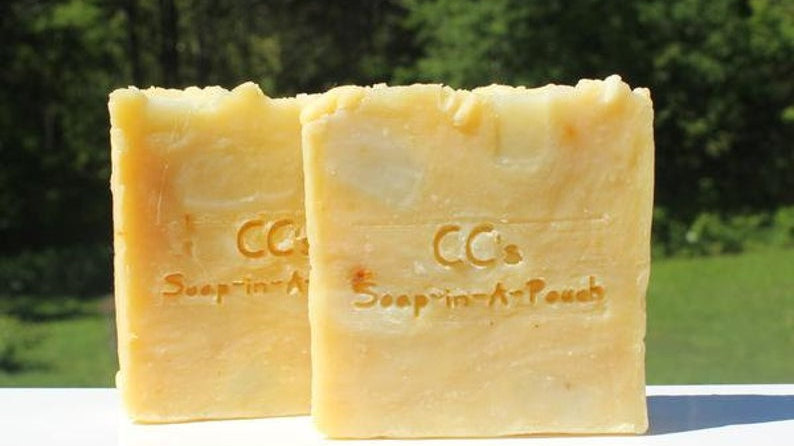 Citrus Tropical Punch Soap