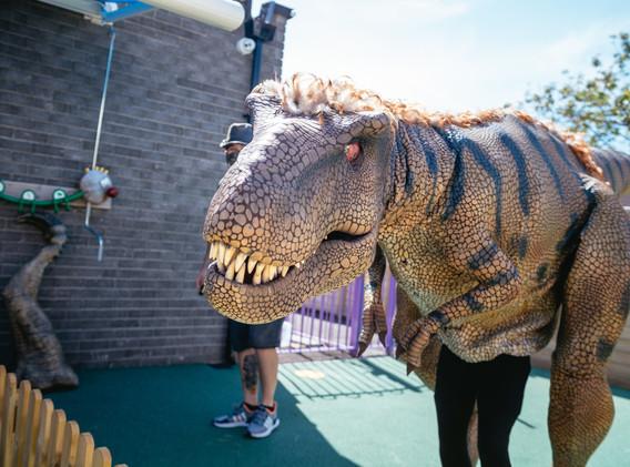 Ribbons Dinosaur Day and Summer (167 of