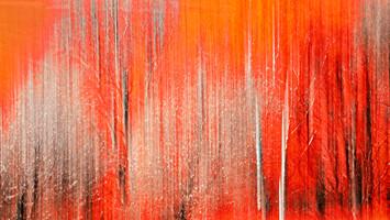 20062 Bäume im Rot.jpg
