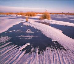 Wintermorgen-1.tif