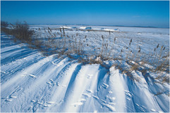 Schnee-142.jpg