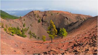 Vulkan Martin-3.jpg