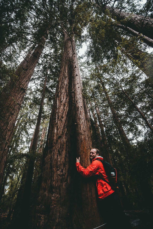 Είναι η δημοσίευση του location ο λόγος της ρύπανσης στην Κύπρο; man in red  jacket hugging a tree