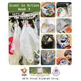 Scout In Action_Week 3.jpg