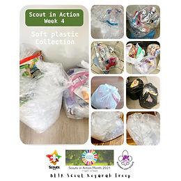 Scout In Action_Week 4.jpg