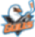 San Diego Gulls, Sports Medicine, Doctor, Shelter Island Medical Group, Point Loma, Physician