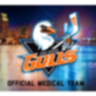Andrew Saleh, MD, San Diego Gulls, Sports Medicine, Doctor, Shelter Island Medical Group, Point Loma, Physician