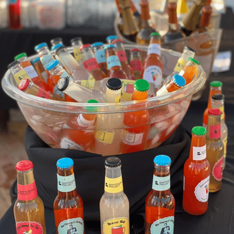 bar catering - homemade alcool pops
